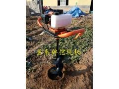 多用植树挖坑机 便携式电线杆挖坑机