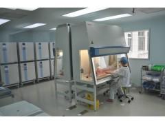 bEnd.3细胞系和培养基