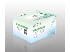 同科生物现货供应HIFI DNA 聚合酶价格低