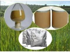 苦瓜酵素粉