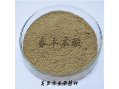 臭豆腐菌种的作用