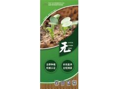深圳晨晖农庄(九江农场)供应有机蔬菜
