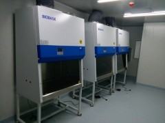 11240BBC86型生物安全柜三人B2全外排