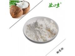 越南进口纯椰浆粉  然之味椰浆粉 椰子粉,椰汁原料