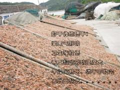 海鱼空气能烘干机 海鱼高效烘干机 海鱼烘干机厂家直销