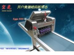 宏光5头高速禽蛋喷码机,蛋品喷码机 厂家直销