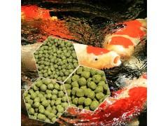 小型鱼饲料机