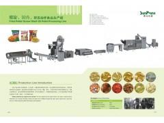 双螺杆挤压膨化机,膨化食品机械设备