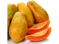 供应纯天然木瓜速溶粉 现货供应