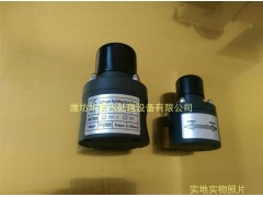 【包邮】DN25背压阀安全阀 PVC材质计量泵阻尼器配套使用