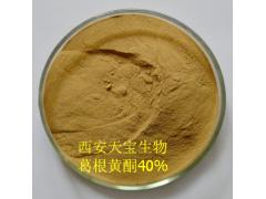 厂家常年大量供应葛根黄酮40% 葛根提取物