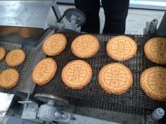 供应家庭饼干机 饼干生产线