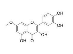 Rhamnetin/鼠李素的价格