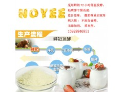 酸奶粉|天然酸奶粉|乳酸菌发酵酸奶粉|喷雾干燥酸奶粉|