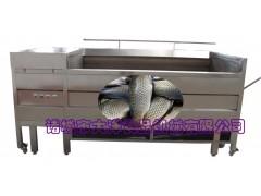 全钢无伤型脱鱼鳞机 自动去鱼鳞机