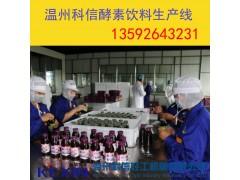 全套果蔬酵素饮品制作设备价格 酵素发酵工艺