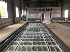 专业5吨/15吨/20吨/25吨/35吨/100吨大型冰砖机