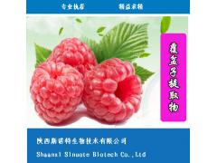 【厂价直销】覆盆子酮 含量99% 食品调香