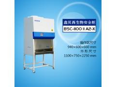 BSC-1100IIA2-X生物安全柜厂家/高校用生物安全柜