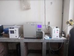 芝麻香型白酒中3-甲硫基丙醇测定专用气相色谱仪