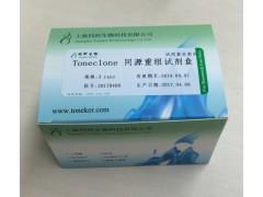 Toneclone同源重组试剂盒价格,无缝克隆试剂盒同科生物
