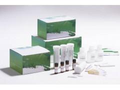 呋喃代谢物四合一快速检测试纸条,胶体金检测卡