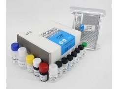 沙丁胺醇酶联免疫试剂盒