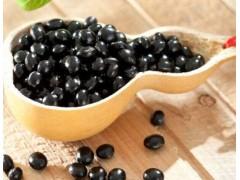 黑豆粉 黑豆皮提取 纯天然30倍浓缩粉