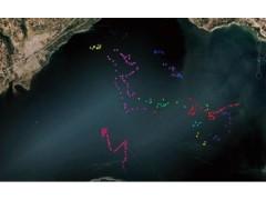 鱼类跟踪监测  VPS鱼类声学跟踪监测三维定位系统