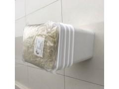 厂家大量长期供应优质牛血清白蛋白