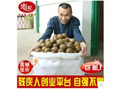 罗汉果盒装干果茶广西特产永福低温脱水大果 18个罗汉果鲜果