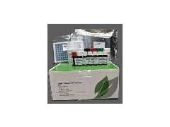 Evergreen乳铁蛋白检测试剂盒