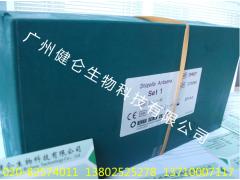 F2毒素检测卡 玉米赤霉烯酮检测试剂