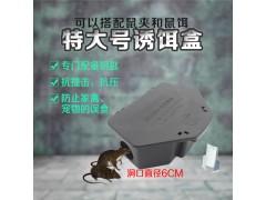 特大号坚固诱饵盒毒饵站捕鼠盒