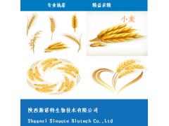 小麦胚芽提取物 小麦胚芽粉 小麦浸膏 现货供应