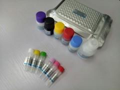 大鼠胰岛素(INS)酶联免疫试剂盒(ELISA试剂盒)
