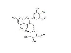 落叶黄素-3-O-β-D-葡萄糖苷的价格