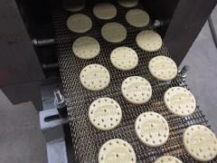 饼干机厂家排名 饼干机100公斤产量的生产线