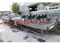QX-6000利特皮皮枣清洗机 红枣清洗机  红枣清洗设备