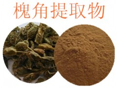 槐角提取物 槐角甙 优质保健原料粉