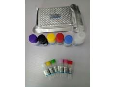 人胰岛素原(Pro-INS)酶联免疫试剂盒(ELISA试剂盒
