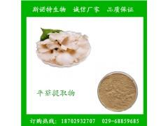 平菇提取物 平菇速溶粉 100%纯天然萃取