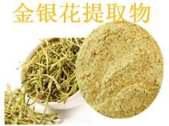 金银花提取物 10:1 绿原酸 厂家直销 天然金银花提取