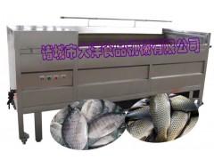 YQT型全自动脱鱼鳞机 优质去鱼鳞机