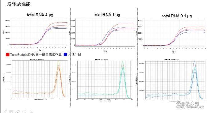 Tones<em></em>cript cDNA 第一链合成试剂盒