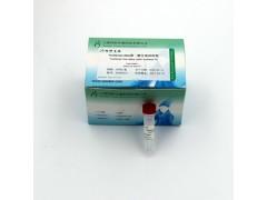 同科生物ToneScript cDNA 合成试剂盒