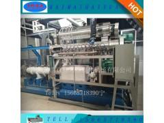 热销PHJ100大型宠物食品膨化机 时产2~3吨