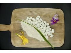 白芸豆提取物  淀粉酶抑制蛋白
