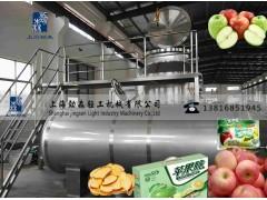 苹果脆片真空油炸机、水果深加工设备、苹果脆低温油浴脱水干燥机