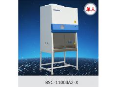 单人生物安全柜1100mm尺寸-750mm门宽可进入实验室